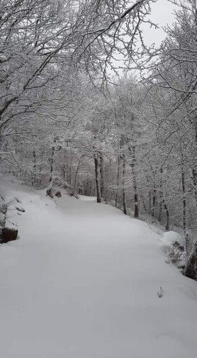Neve a Piano Battaglia