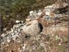 Archeologia:manufatto del II secolo a.C. trovato in Calabria