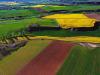 In vendita 16 mila ettari, spinta per agricoltura 5.0