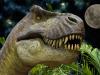 La Terra è stata popolata da circa 2,5 miliardi di T. rex (fonte: Dinosaurs Alive! da Flickr)