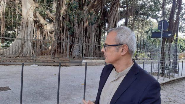 beni culturali, Alberto Samonà, Palermo, Politica
