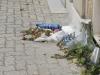 Sporcizia al cimitero di Trapani, disposto il servizio urgente di pulizia