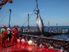 Pesca, il futuro del Mediterraneo al Blue Sea Land