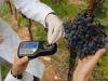 Quarta edizione del concorso Fem sui vini del territorio