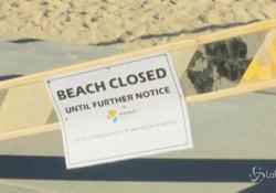 Australia, surfista muore dopo l'attacco di uno squalo L'incidente a Forster, a nord di Sydney - LaPresse/AP