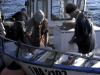 """Pesca in crisi a Mazara, Lo Curto (Udc): """"La politica Ue danneggia la Sicilia"""""""