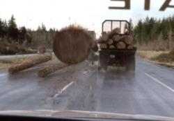 Come in Final Destination: il tronco dell'albero sfonda il parabrezza dell'auto Il video del parabrezza sfondato è stato cliccato oltre 3 milioni di volte su TikTok - CorriereTV