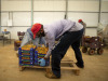 Dl sostegni: Patuanelli, bonus per braccianti agricoli