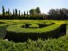 Perdersi nel labirinto di Borges a Venezia, tra le piante di bosso