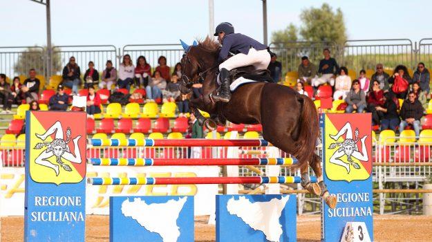 animali, equitazione, Catania, Sport