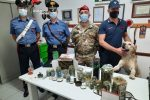 Canicattini Bagni, nasconde in casa 2 chili di marijuana: un arresto