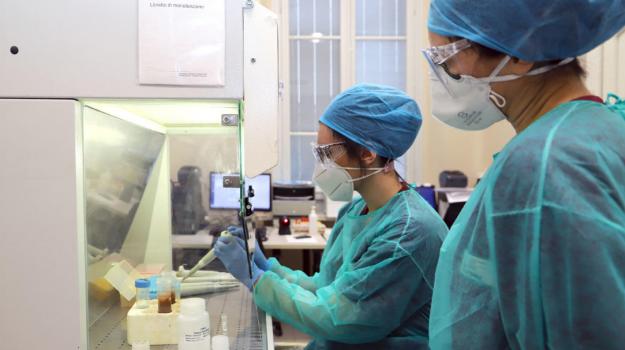 Coronavirus, il bollettino: in Sicilia 229 casi, prosegue il calo dei ricoveri