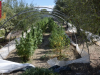 Droga tra gli ortaggi in una serra a Licata, arrestato un agricoltore