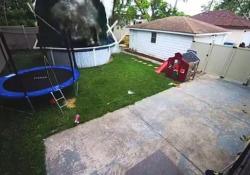Il camioncino fuori controllo entra in giardino e spazza via una piscina Alcuni secondi dopo l'incidente, la donna al volante esce dall'auto, illesa - Dalla Rete