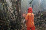 Incendi senza sosta nel Siracusano, paura a Portopalo