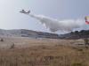Ondata di caldo nel Palermitano e divampano gli incendi: roghi tra Partinico e Belmonte