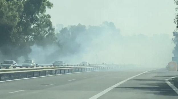 incendi, partinico, Palermo, Cronaca
