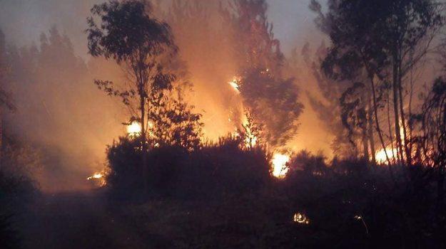 caldo, incendi, Monterosso, Ragusa, Cronaca