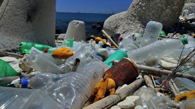 rifiuti, Sicilia, Società