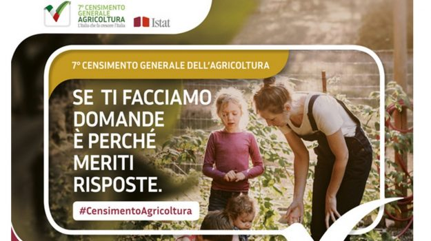 AGRICOLTURA, Trapani, Economia