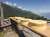 7 tappe per le Dop Valtellina Casera e Bitto (Fonte: Consorzio Tutela dei formaggi Bitto e Valtellina Casera)