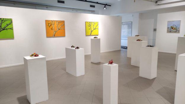 Spazio Loc, Anna Kennel, Messina, Cultura