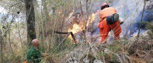Forestali al lavoro per spegnere un incendio