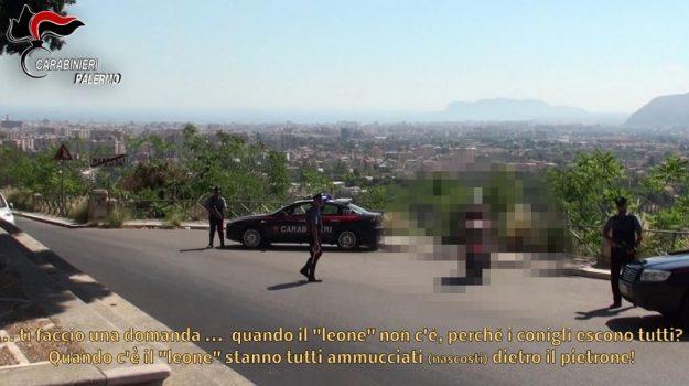 droga, mafia, partinico, Palermo, Cronaca