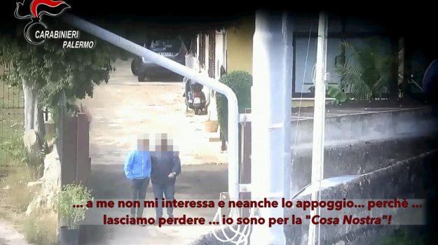 mafia, Tommaso Natale, Palermo, Cronaca