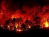 Le sostanze inquinanti emesse dagli incendi boschivi minacciano il Mediterraneo (fonte: Pixabay)