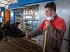 Mipaaf, con intesa Stato-Regioni 114 mln a zootecnia e pesca