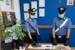 Nasconde marijuana in casa, 32enne denunciato a Gioiosa Marea