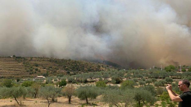 alia, incendi, Palermo, Cronaca