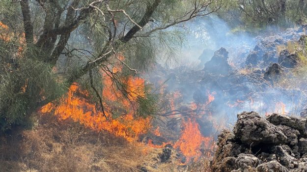 Gangi, incendio, madonie, San Mauro Castelverde, Palermo, Cronaca