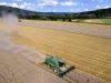 Ismea, prezzi del frumento duro a rischio fiammata