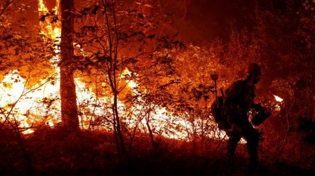 incendi, Sicilia, Mondo
