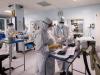 Coronavirus, il bollettino: in Sicilia contagi dimezzati e boom di guariti, calano anche i ricoveri