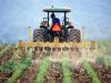 Psr Sicilia, boccata di ossigeno per le imprese agricole: più tempo per completare i progetti