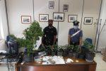 Serra di marijuana in casa con oltre 30 piante, arrestato 25enne a Ispica