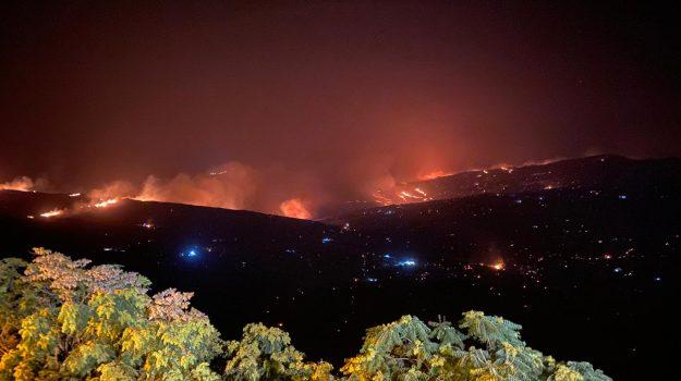 incendi, Nello Musumeci, Sicilia, Cronaca