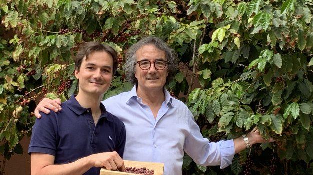 Coltivazione di caffè a Palermo, Andrea Morettino, Palermo, Economia