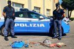 Ladri in azione nell'ex birrificio Messina: quattro arresti