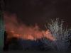 Gli incendi tornano a spaventare la Sicilia, fiamme a Partinico e Custonaci: minacciate le case
