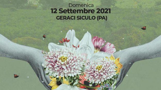 eventi, Palermo, Cultura