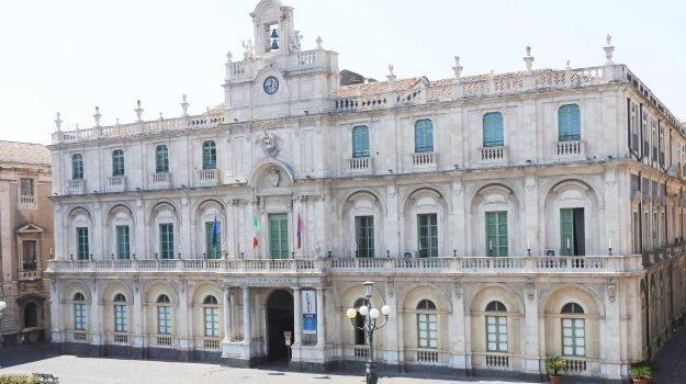 università catania, Catania, Cronaca