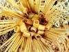 Pasta Day: vale 20 miliardi, un quarto in Italia