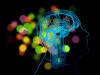 Anche il cervello ha unimpronta unica per ciascun individuo (fonte: PublicDomainPictures)