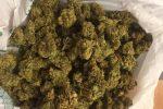 La marijuana sequestrata a Enna