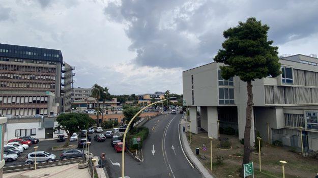 LAVORO, POLICLINICO, Catania, Economia