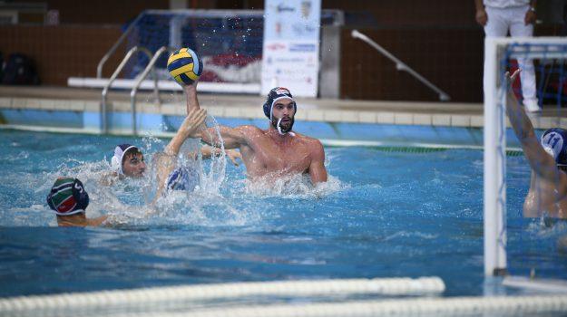 pallanuoto, telimar, Andrija Basic, Marcello Giliberti, Palermo, Sport